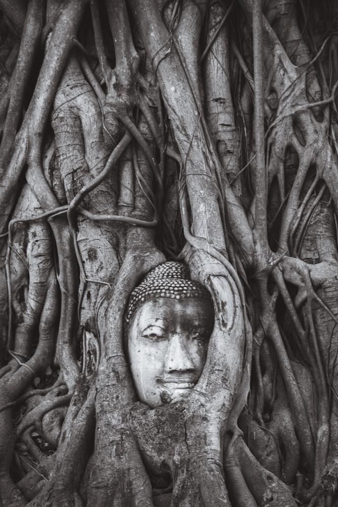 DSC_0290_ayutthaya_thailand