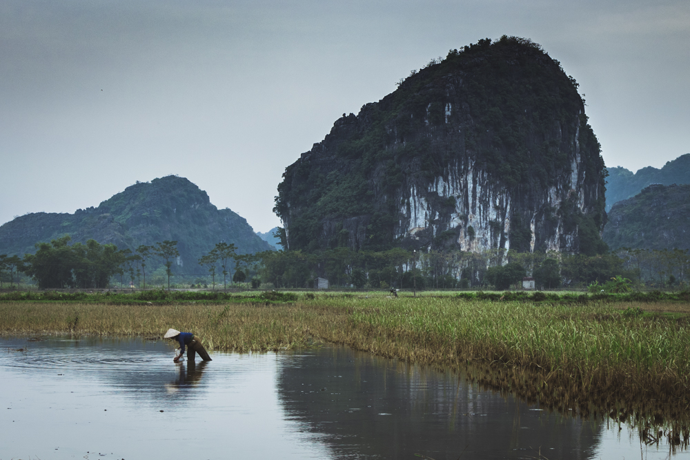 DSC_0441-2_ninh_binh_vietnam