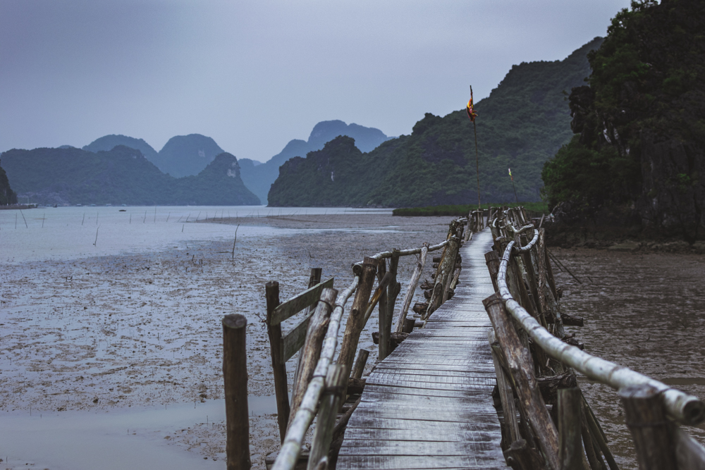DSC_0590_halong_bay_vietnam