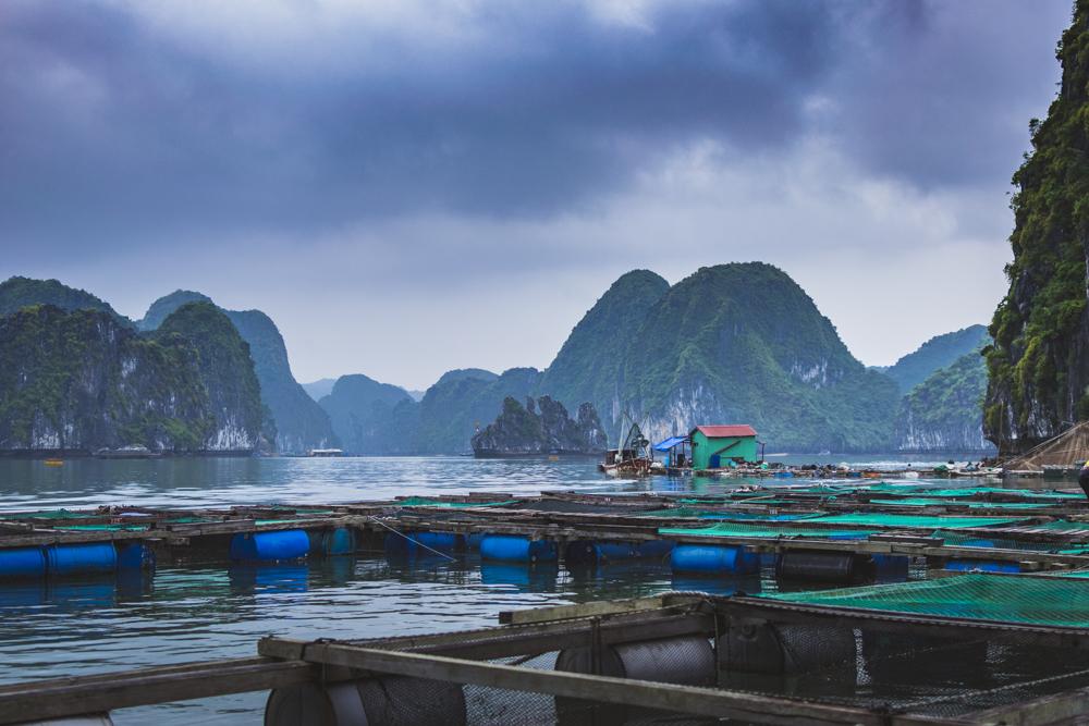 DSC_0702-2_halong_bay_vietnam
