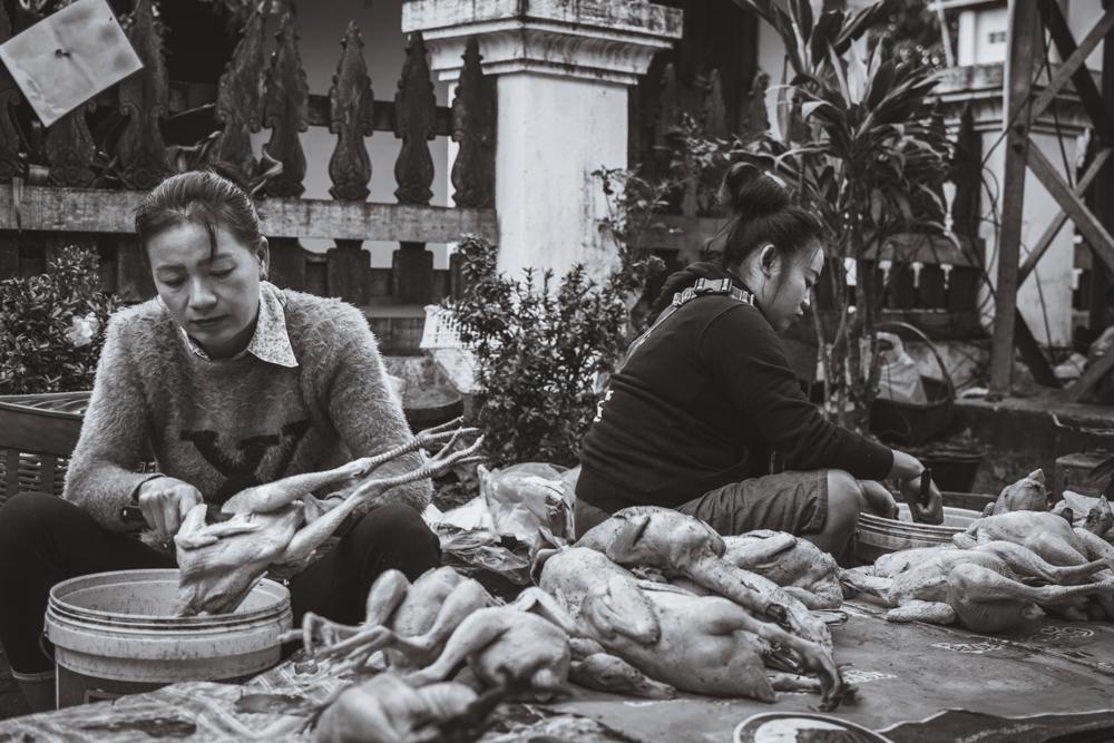 DSC_1063-3_luang_prabang_laos