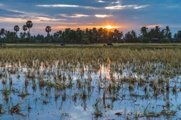DSC_0499_kampot_cambodia