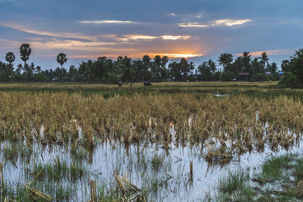 DSC_0501_kampot_cambodia