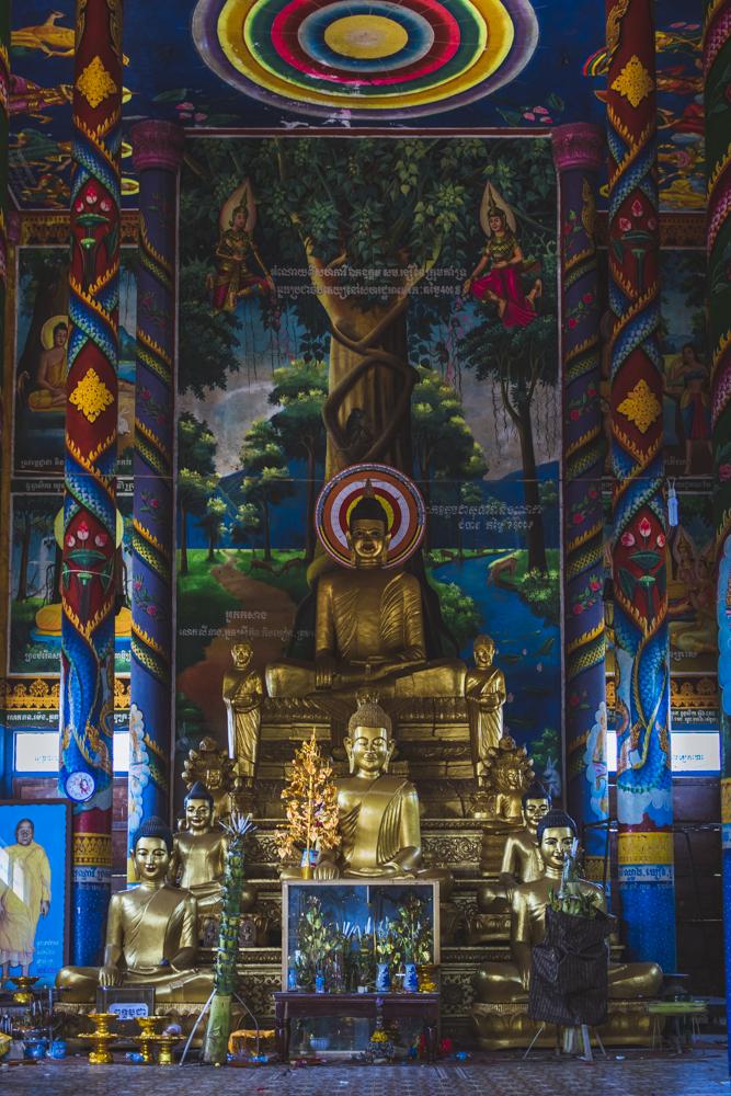 DSC_0692_kratie_cambodia