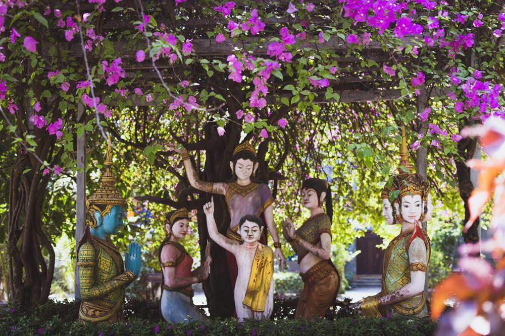 DSC_0709_kratie_cambodia