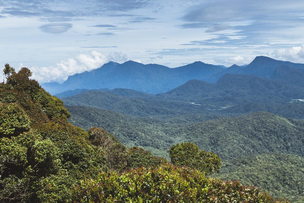 DSC_0913_cameron_highlands_malaysia