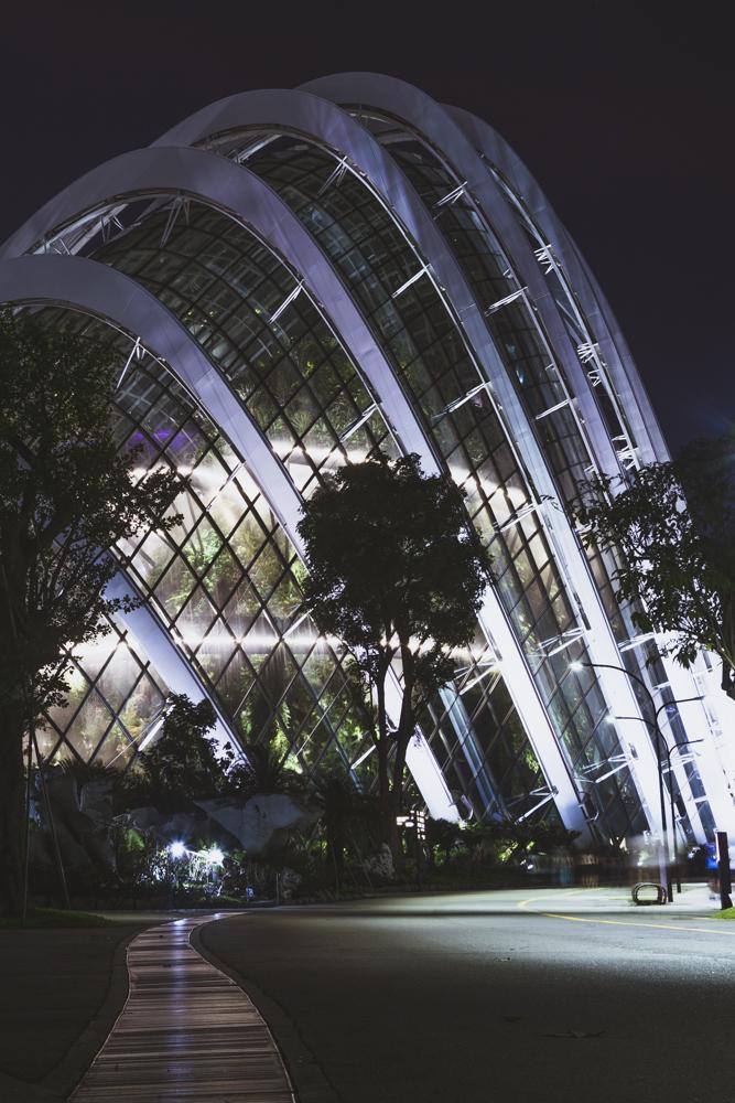 DSC_0491_singapore