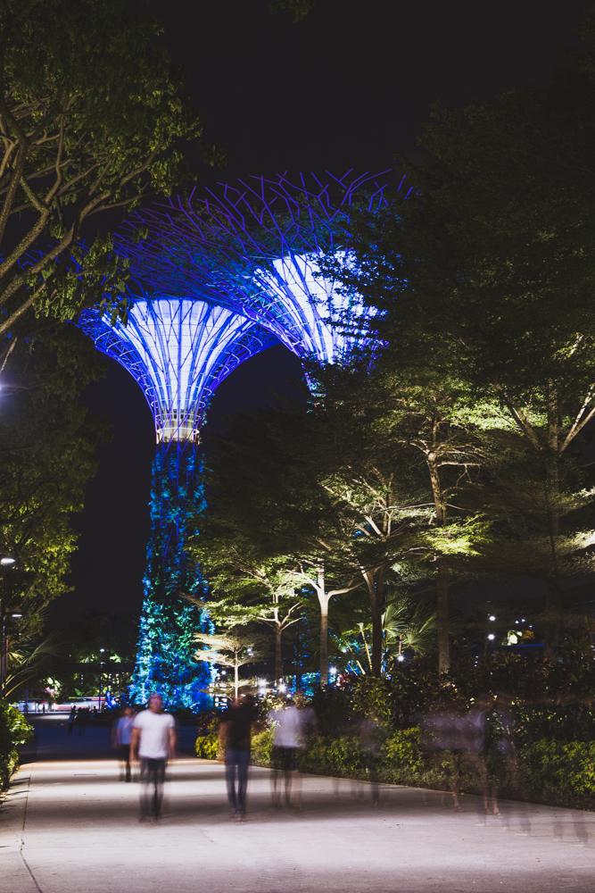 DSC_0499_singapore