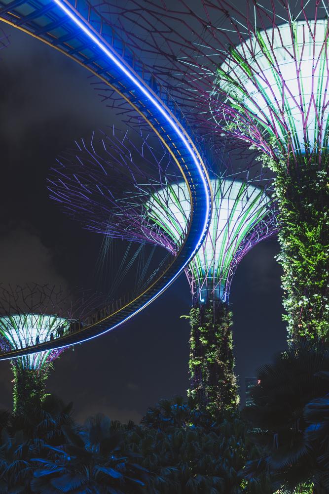 DSC_0514_singapore