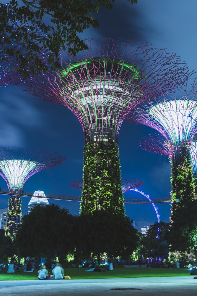 DSC_0519_singapore