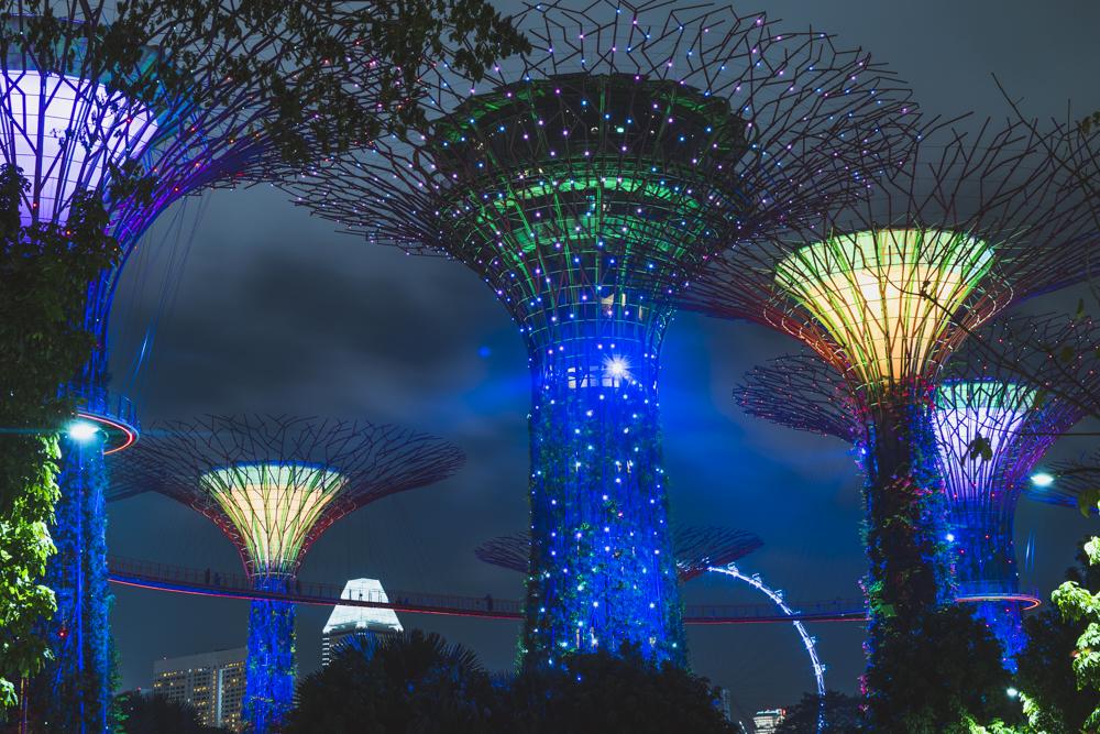 DSC_0530_singapore