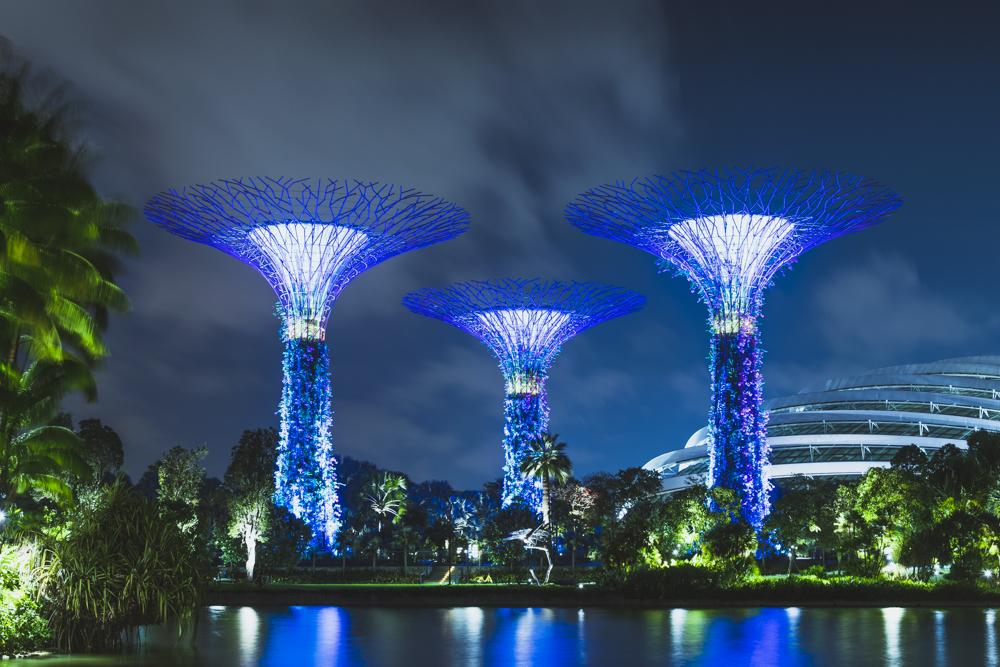 DSC_0537_singapore