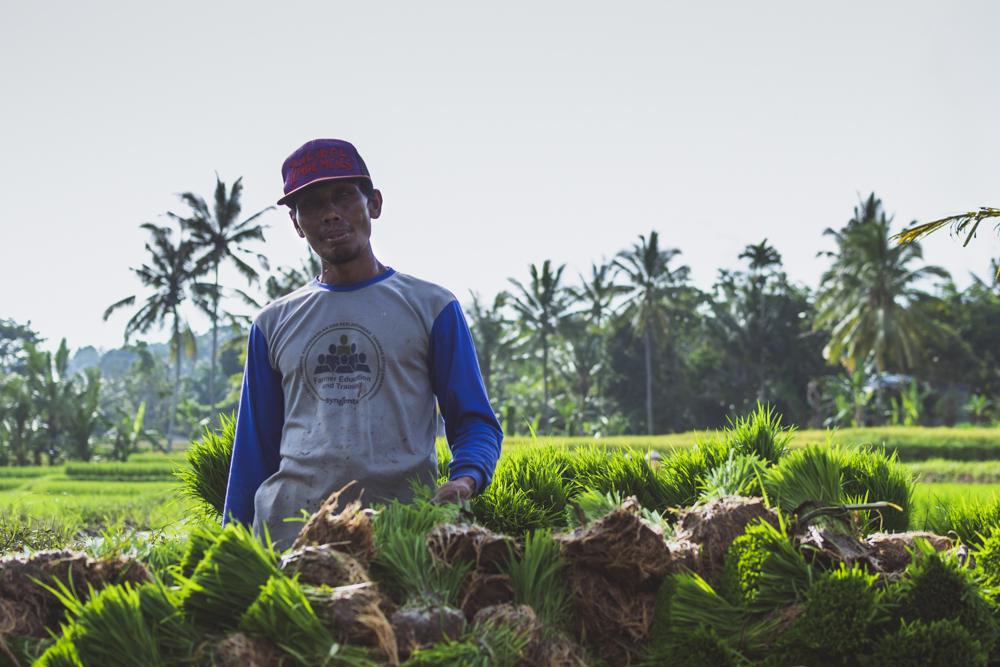 DSC_0733_licin_indonesia