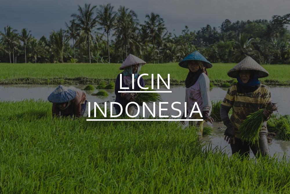 DSC_07391_licin_indonesia
