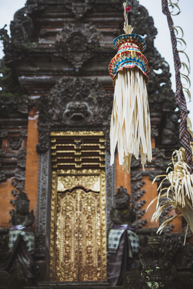 DSC_0902_ubud_indonesia