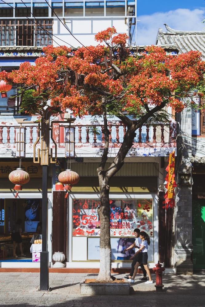 DSC_0217_jianshui_china