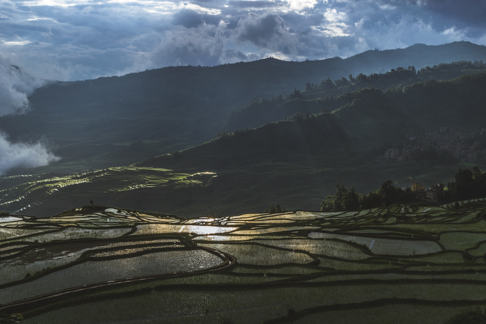 DSC_0618_yuanyang_china
