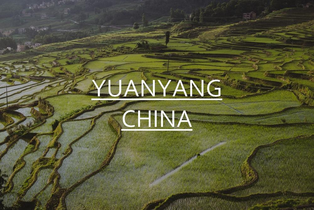 DSC_07777_yuanyang_china