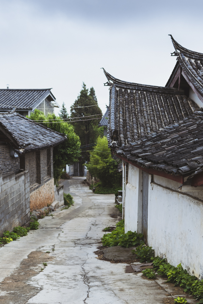 DSC_1072_lijiang_china