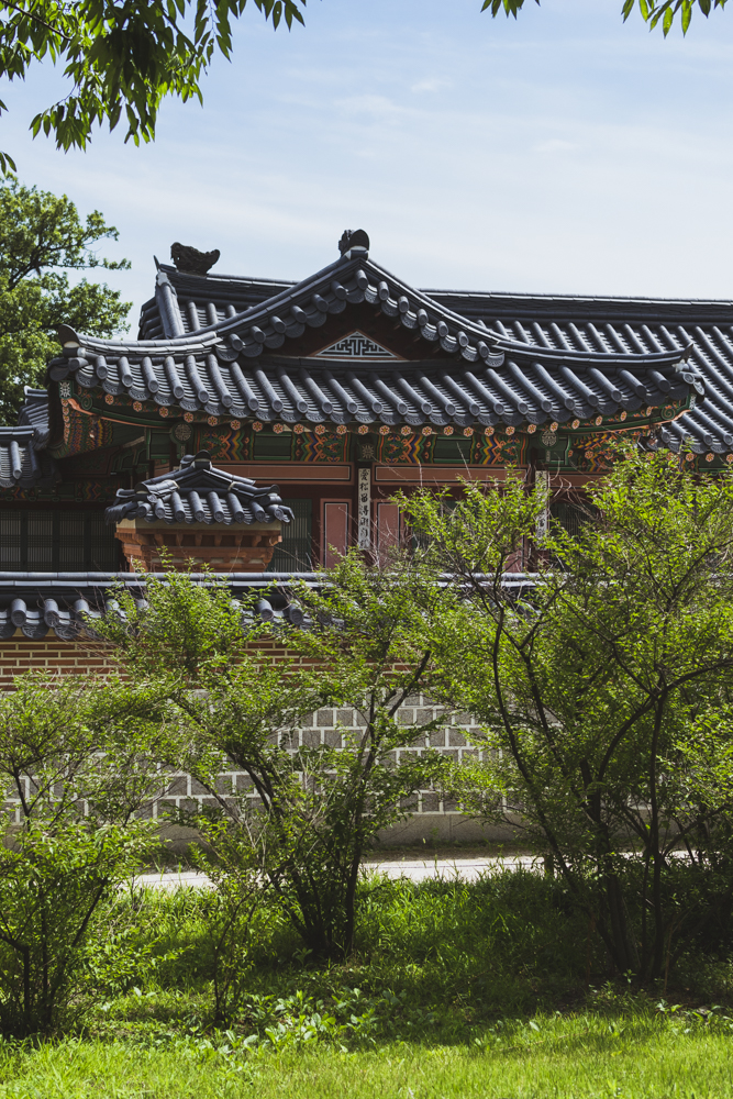 DSC_0263_seoul_south_korea