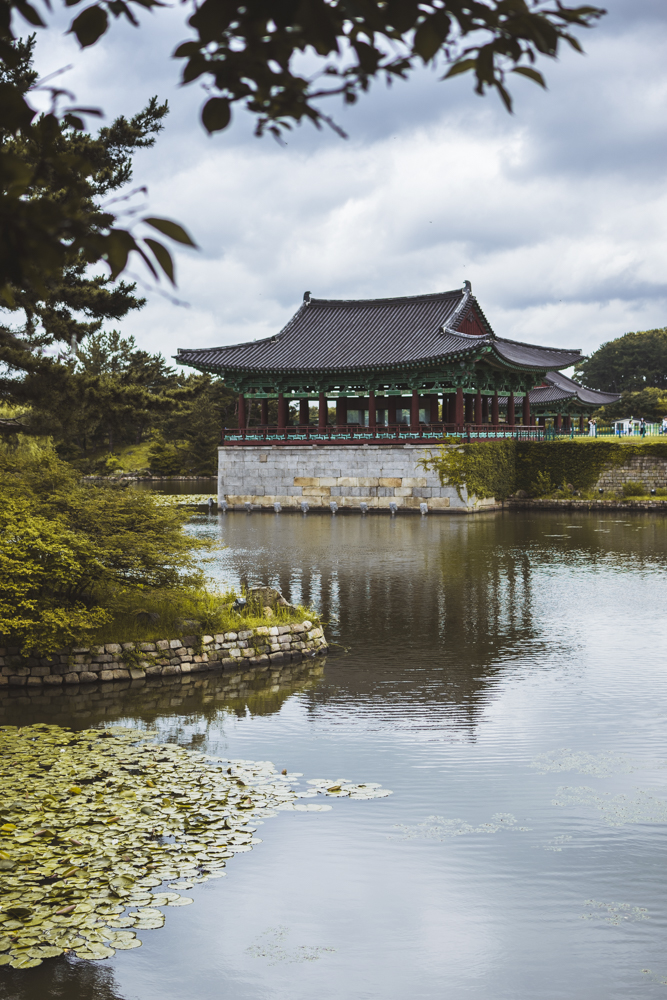 DSC_0055_gyeongju_south_korea